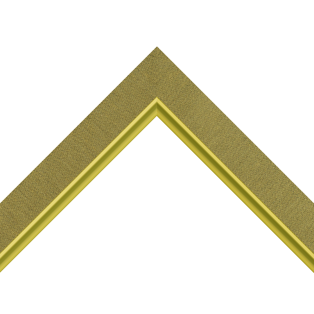 1-1/4″ Coin Silk Flat with Gold Scoop Lip