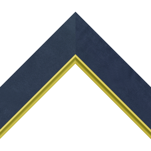 2″ Navy Suede Flat with Gold Scoop Lip